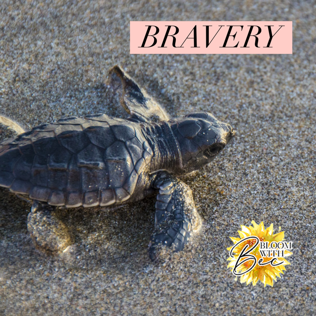 Bravery Comes In All Shapes And Sizes